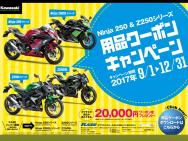 n250.z250